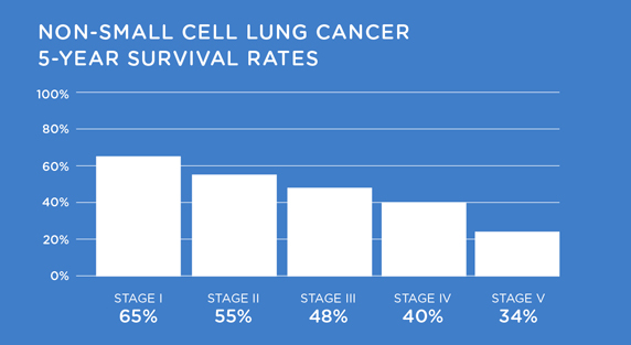 Non-Small Cell Lung Cancer Survival